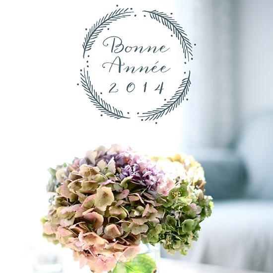 bonne-annee-2014-hortensias-2