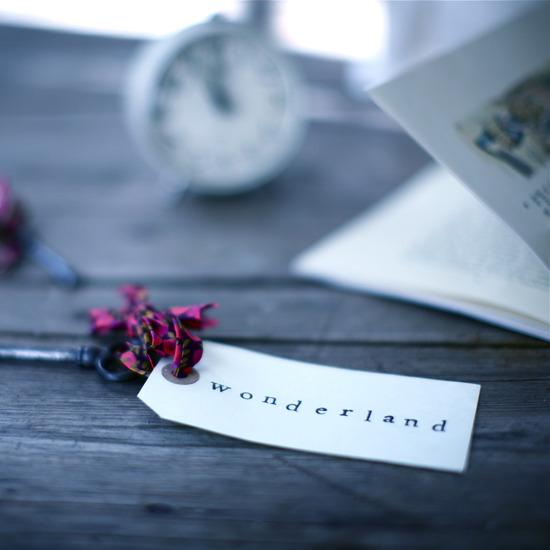 carte-wonderland-1