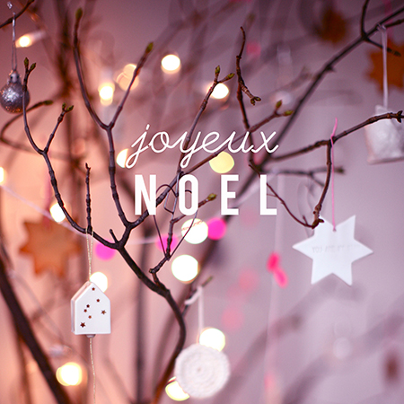 joyeux-noel-photo-rose-2